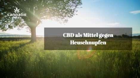 CBD und Heuschnupfen - Cannalin