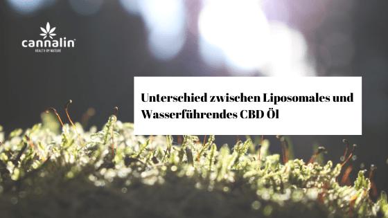 Unterschied zwischen Liposomales und Wasserführendes CBD Öl