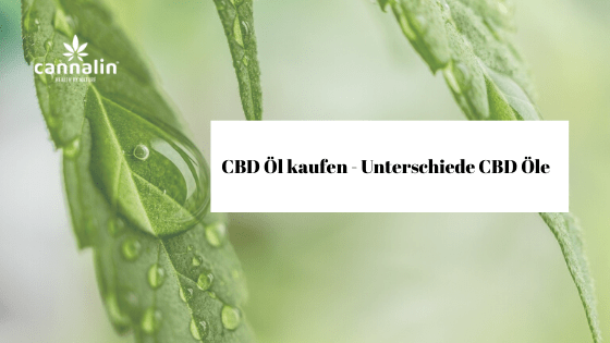 Unterschiede CBD Öl
