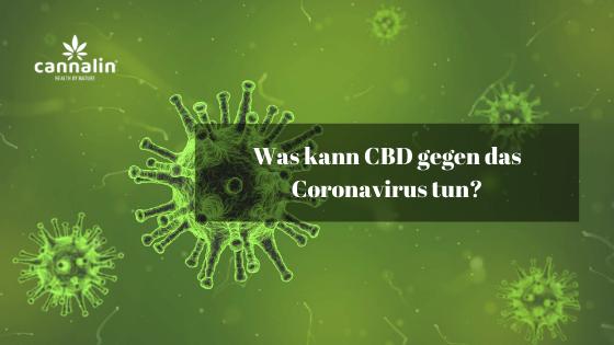 Was kann CBD gegen das Coronavirus tun_